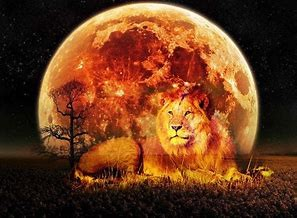 leo full moon 2019 image